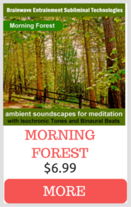 AUDIO MEDITATIONS + AMBIENT SOUNDSCAPES - Dar Payment